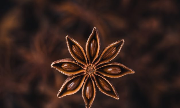 How to Use Essential Oils to Cure COVID: Star Anise and Pine Needle